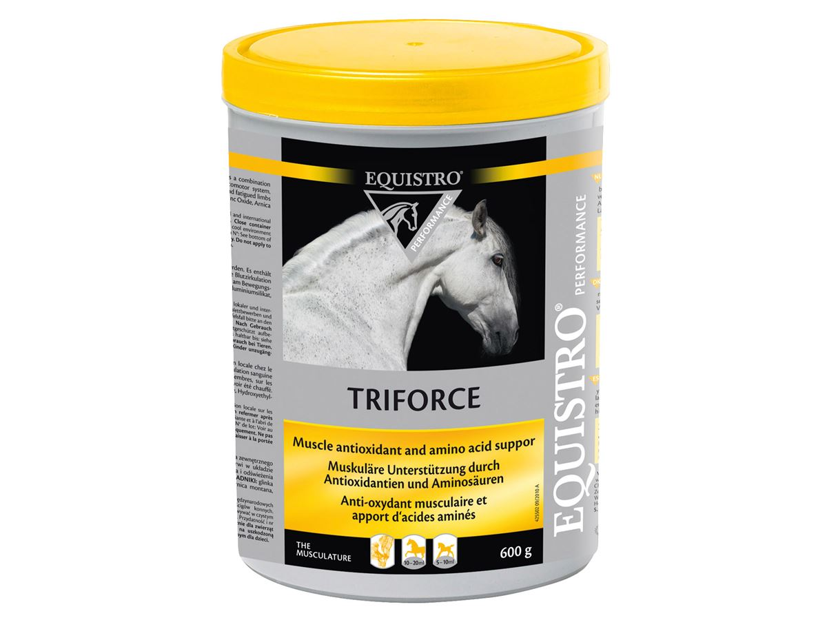 2207-Equistro-Triforce-600g.jpg
